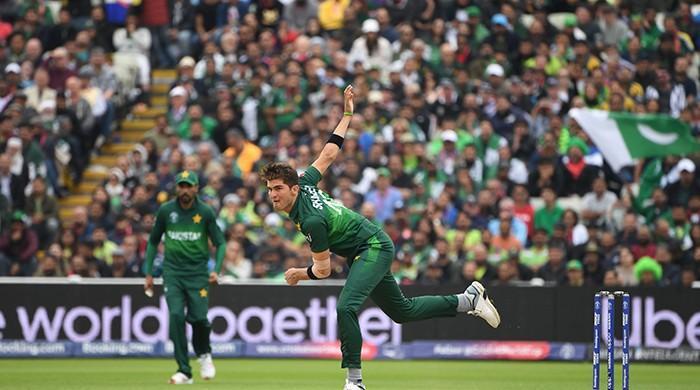 Shaheen flies high for Pakistan in must-win New Zealand clash