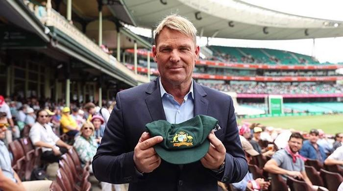 Aussie cricket legends to pad up for bushfire relief
