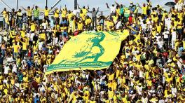 South Africa granted provisional green light to resume sports
